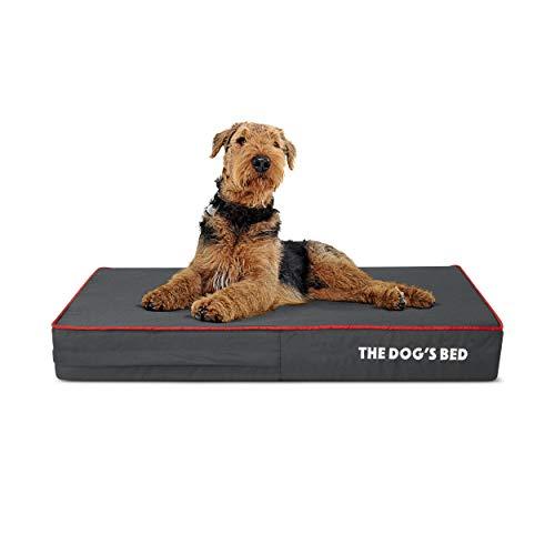 The Dog's Bed Orthopedic Dog Bed Medium Grey/Red 34x22, Premium Memory Foam, Pain Relief: Arthritis, Hip & Elbow Dysplasia, Post Surgery, Lameness,...