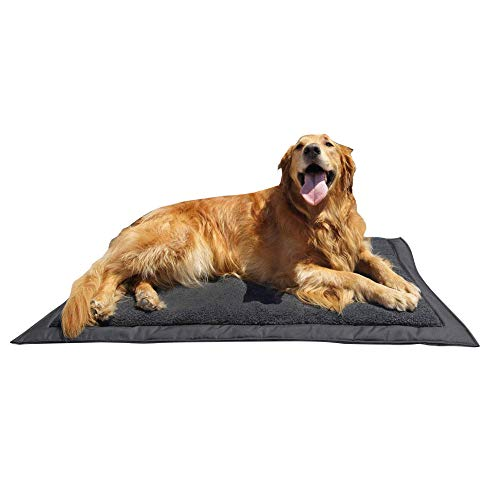 Lightspeed Outdoors Self Inflating Fleece Top Cover Travel Dog Bed | Kennel Bed ,32-Inch by 42 Inch