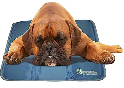 TheGreenPetShop Dog Cooling Mat – Gel Self Cooling Mat for Dogs – The Must-Have Cool Pet Pad for Hot Summer Weather – Patented Pressure...