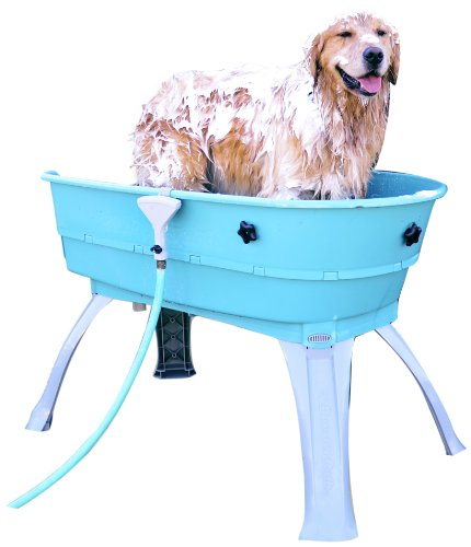 Booster Bath Elevated Pet Bathing, Teal, Large (Pack of 1)