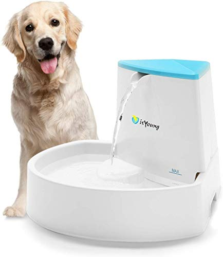 isYoung Dog Fountain, 84oz/2.5L Pet Fountain Automatic Water Dispenser for Dogs and Cats, Healthy and Hygienic Dog Fountain