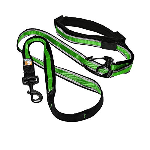 Kurgo 6 in 1 Hands Free Dog Leash, Reflective Running Belt Leash for Dogs, Crossbody & Waist Belt Leash, Carabiner clip, Padded Handle For Training,...