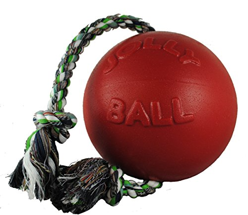 Romp-n-Roll Jolly ball
