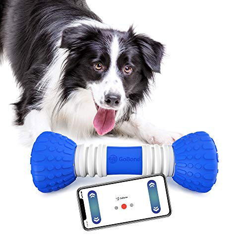 GoBone interactive Smart Bone