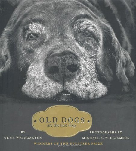 Old Dogs:Are the Best Dogs