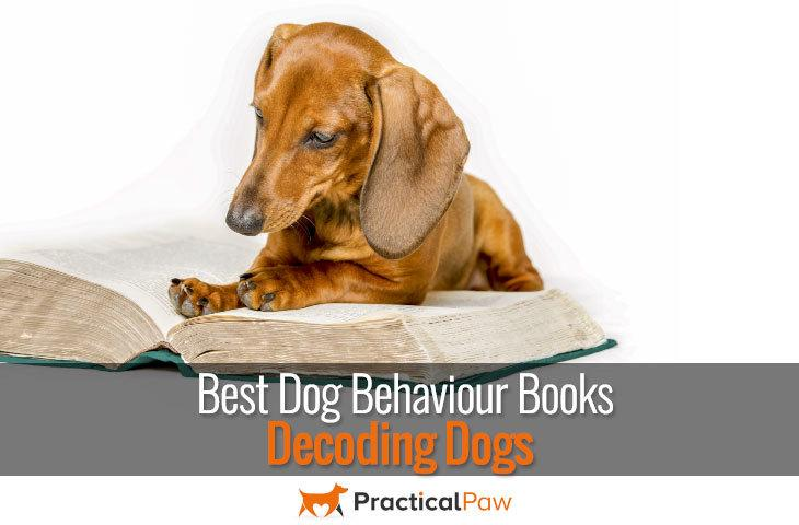 Best Dog Behaviour Books - decoding dogs