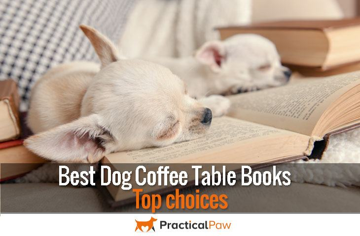 Best dog coffee table books - top choices - Practical Paw