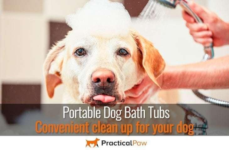 Portable dog bath tubs