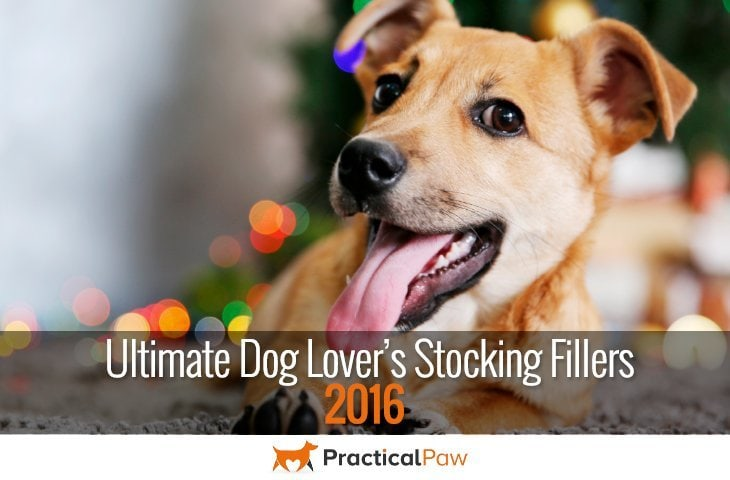 Ultimate Dog Lover's Stocking Fillers 2016