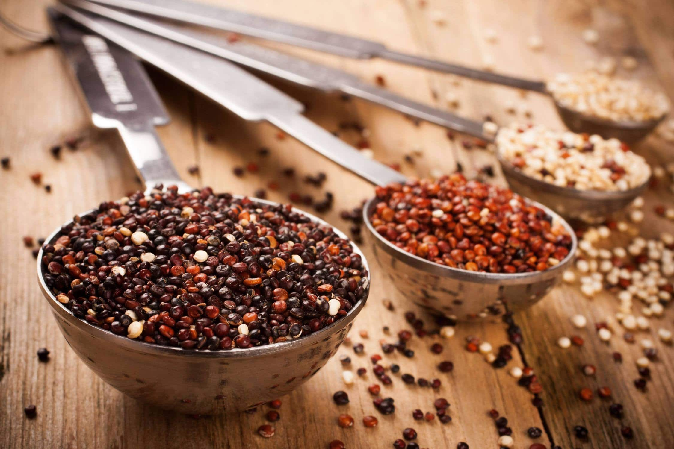 Feeding dogs quinoa