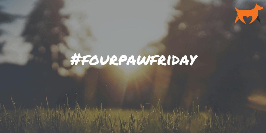 fourpawfriday
